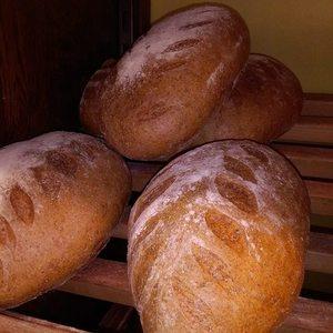 Boulangerie Al'catoire - Pains