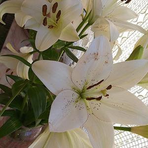 Un écrit, des fleurs, des paroles, des rires et des sourires Voilà les ingrédients d'un apres-midi réussi